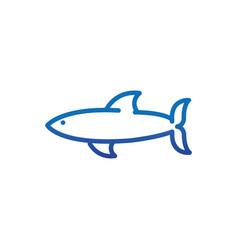 shark animal marine life thick line blue vector image