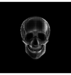 with a human skull vector image