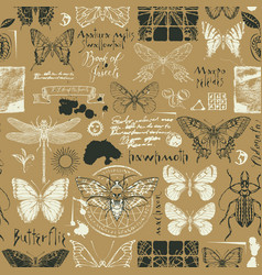 abstract seamless background with insects vector image
