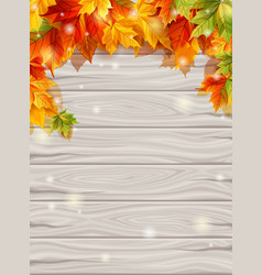 autumn leaves on background wooden boards vector image