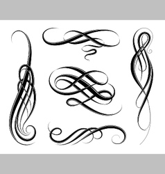 Calligraphic swirls vector