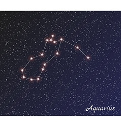 Constellation aquarius vector