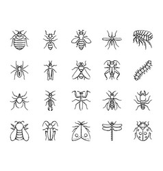 Danger insect charcoal draw line icons set vector