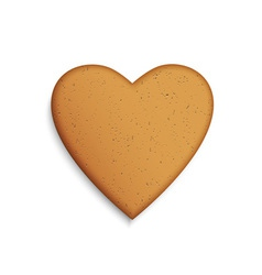 Gingerbread cookie in shape a heart vector