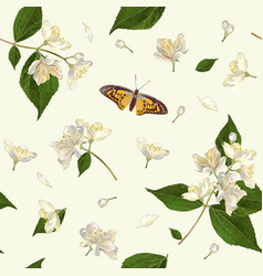 Jasmine seamless pattern vector