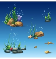 Kit of the underwater world with shell seaweed vector