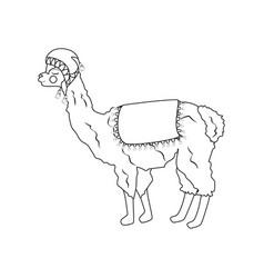 Llama in hat outline vector
