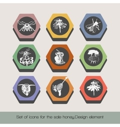 Set of icons for the sale honey 6 vector image