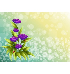 A plant with violet flowers vector