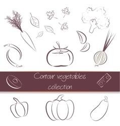 Contour vegetables super pack vector image