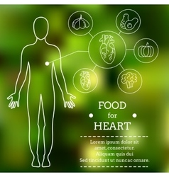 Food for heart vector