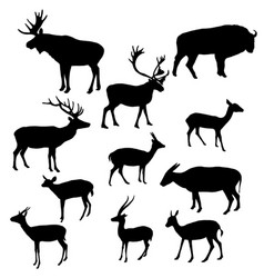 Silhouettes of horned animals vector
