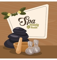 spa beauty and health herbal organic wellness vector image