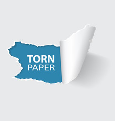 torn hole on paper vector image