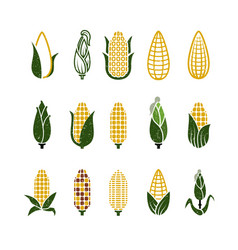 vintage grunge corn icons isolated on white vector image