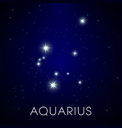 Zodiac sign aquarius constellation in cosmic vector