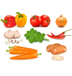 big colorful group of vegetables vector image vector image