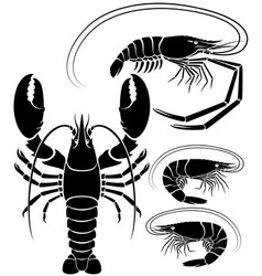 lobster shrimp and prawn vector image vector image