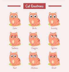cartoon cats or kitten with face emotions vector image