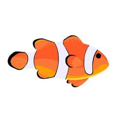 Clown fish amphiprioninae icon isolated on white vector