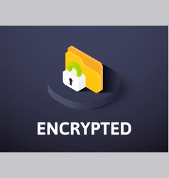 Encrypted isometric icon isolated on color vector