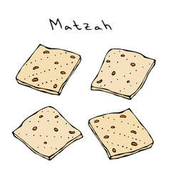 Matzah or matzo unleavened bread for pesach vector