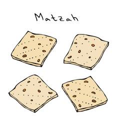 matzah or matzo unleavened bread for pesach vector image