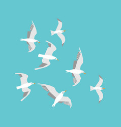 seagulls in the sky flat vector image