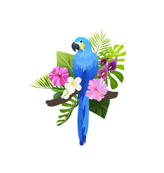 tropical bird composition vector image