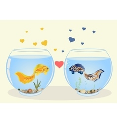 Two fish in love vector image