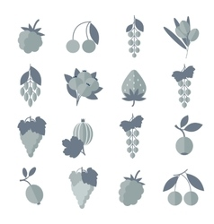 black white gray icons of berries set vector image vector image