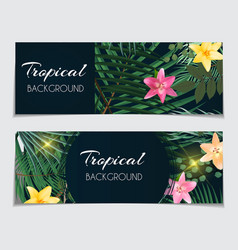 abstract natural tropical gift voucher discount vector image