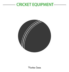 Cricket game equipment vector image
