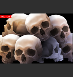 detailed graphic photorealistic human skulls vector image