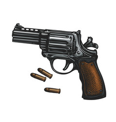 Pistol revolver gun and ammo sketch vintage vector