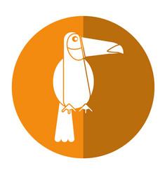 Toucan bird exotic fauna shadow vector