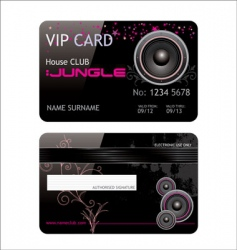 Vip club card vector