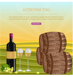 wine card with barrels and bottle vineyard vector image
