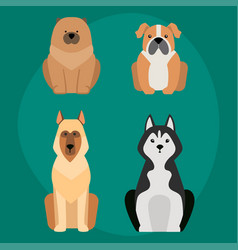 funny cartoon dog character bread in vector image vector image