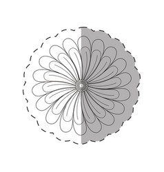 dahlia flower decoration cut line vector image