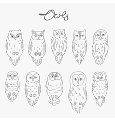 Set of owls lineart vector image vector image