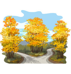 Fork in road through a forest vector