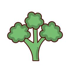 Green delicious broccoli healthy fruit vector