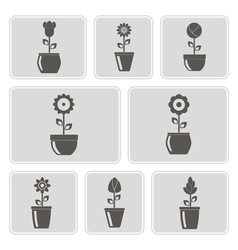 monochrome icons with flowers in the pots vector image