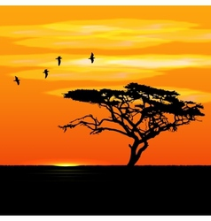 Sunset tree and birds silhouettes vector