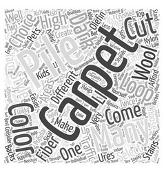 Carpet Choices Word Cloud Concept vector image vector image