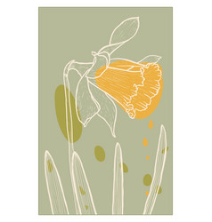 Abstract line art daffodil flower with color vector