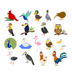 big set of different cartoon birds vector image