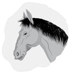 Gray horse vector