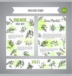 Herbs and spices background herb plant spice vector